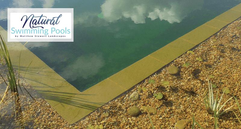 Natural Swimming Pools Dorset