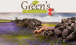Greens For Healthy Pets Testimonial